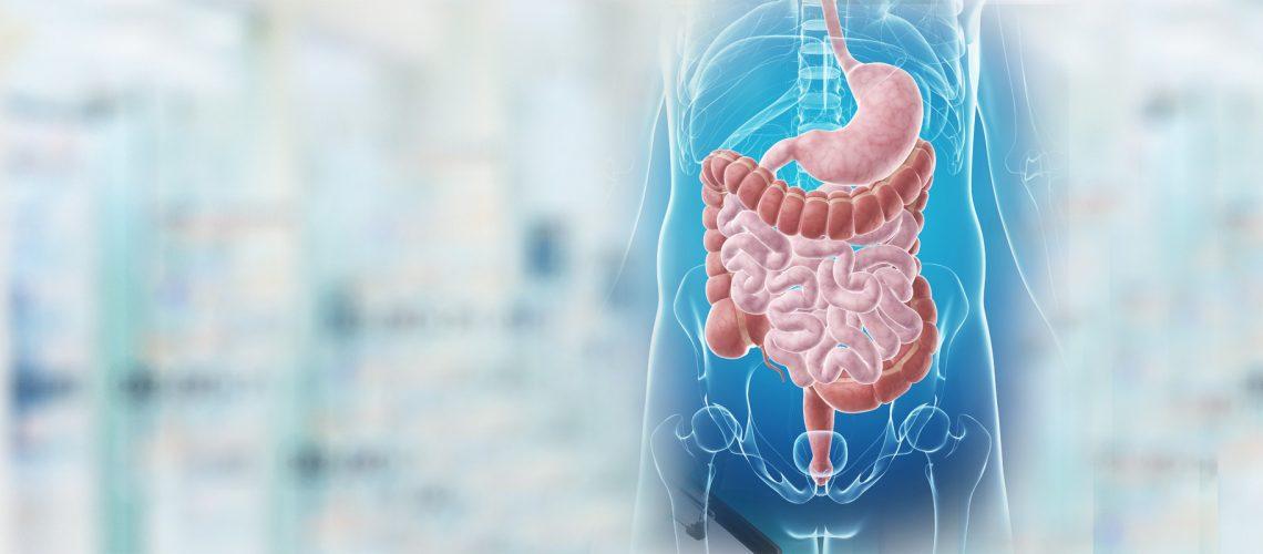 Gastroenterology-1